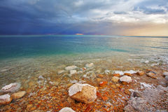 Coast of the Dead Sea in Israel Stock Photos