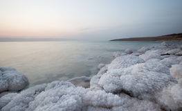 Coast of Dead Sea, Jordan Royalty Free Stock Image