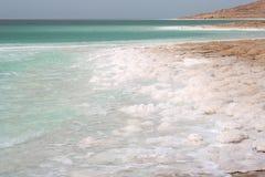 coast det döda havet Arkivfoto