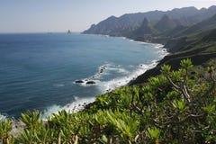 coast det tropiska havet Royaltyfri Bild