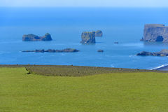coast dyrholaeyiceland den södra sikten fotografering för bildbyråer