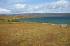 Coast of East Falkland Royalty Free Stock Photography