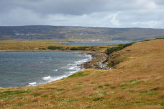 Coast of East Falkland Stock Photography