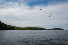 Coast famous Valaam Island in the morning Royalty Free Stock Images
