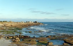 Lesconil rocky coast in Brittany Royalty Free Stock Photography