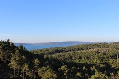 Coast forest. Canakkale throat and güzelyalı coast forest and road Royalty Free Stock Photography