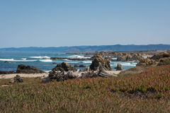 The coast of Fort Bragg, California. A view of the coast of Fort Bragg, California Royalty Free Stock Photo