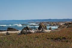 The coast of Fort Bragg, California Royalty Free Stock Photo
