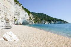 The coast of Gargano National park on Puglia Royalty Free Stock Image
