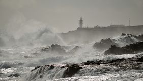 Coast of Gran canaria Stock Photography