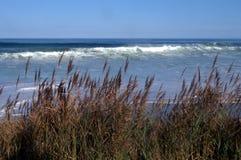 Coast Guard Beach Also, Cape Cod`s National Seashore