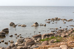 Coast of gulf of Finland Stock Photos