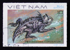 Coast Horned Lizard with the description Phrynosoma coronatum from the series Reptiles, circa 1983. MOSCOW, RUSSIA - FEBRUARY 12, 2017: A Stamp printed in Royalty Free Stock Image