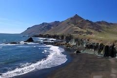 Coast of Iceland Stock Images