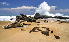 Coast of the Indian Ocean. Sri Lanka. Waves hit the rocks Stock Photography