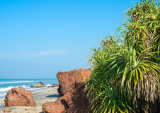 The coast of the Indian Ocean with stones and trees Stock Photography