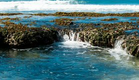 Coast of indian ocean Royalty Free Stock Image