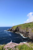 Coast of Ireland. Coast and Cliffs in Ireland , Ring of Kerry royalty free stock image
