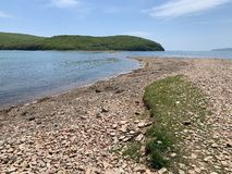 Coast of the island of Shkot from the side of Russkiy Russian, Russky island in spring sunny day. Vladivostok, Russia.  royalty free stock photo