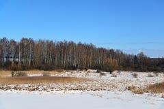 Coast of Ivankovskoye Reservoir in Tver region, Russia Royalty Free Stock Photo