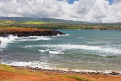 Coast on Kauai island Stock Photography