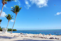 Coast of The Keys, Islamorada, Florida. Detail of the wonderful Florida Coast in Islamorada Royalty Free Stock Photos