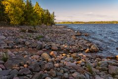 Northern beach with stones Russia Ladoga lake royalty free stock photography