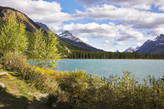 Coast of lake Royalty Free Stock Image