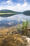 Coast of lake Royalty Free Stock Images
