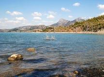 Coast of lake Stock Photography