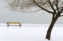 Coast of Lake Balaton in winter time Royalty Free Stock Photos