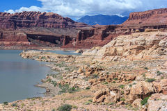 Coast of Lake Powell and Colorado River in Glen Canyon National Recreation Area Royalty Free Stock Photo