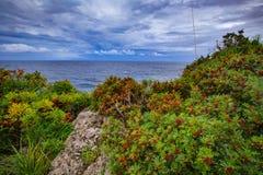 Coast Landscape Royalty Free Stock Images