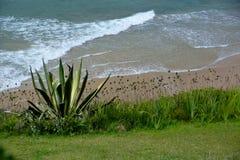 Coast landscape. Nature close to the coast Stock Photo