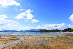 Coast landscape in summer Stock Photo