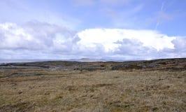 Coast landscape. Winter coast landscape in Norway Stock Image