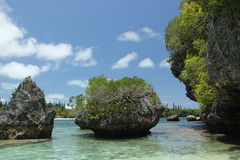 Coast. Large rocks at the coast of the Ile of Pins, New Caledonia France Royalty Free Stock Photography