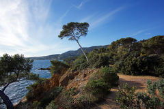Coast of lavandou Royalty Free Stock Photography