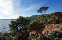 Coast of lavandou Stock Photo