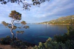 Coast of Lavandou royalty free stock photo