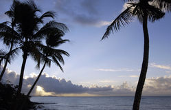 Coast of  Le Diamant in Martinique Stock Photo