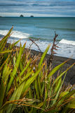 Coast line in New Zealand. People cycling and having great time on the coast line in New Plymouth, near Mount Taranaki by a lovely sunny and little cloudy Royalty Free Stock Images