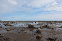 Coast at low tide. Stock Photo