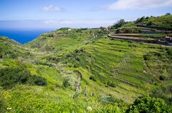 Coast of Madeira island, Ponta do Pargo, Portugal Royalty Free Stock Photos