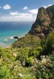 Coast of madeira, portugal Stock Photography