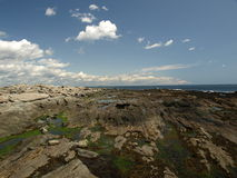 Coast of Maine. Rocky coast of Maine during the summer months Royalty Free Stock Photos