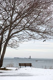 Coast of Maine. Park bench under a tree on the coast of maine in the winter Stock Photos