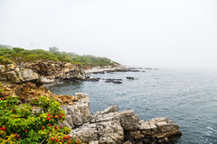 Coast of Maine in Fog Stock Photography
