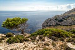 Coast of Majora Stock Images