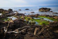 The Coast of Manaduru Peninsula Stock Photography